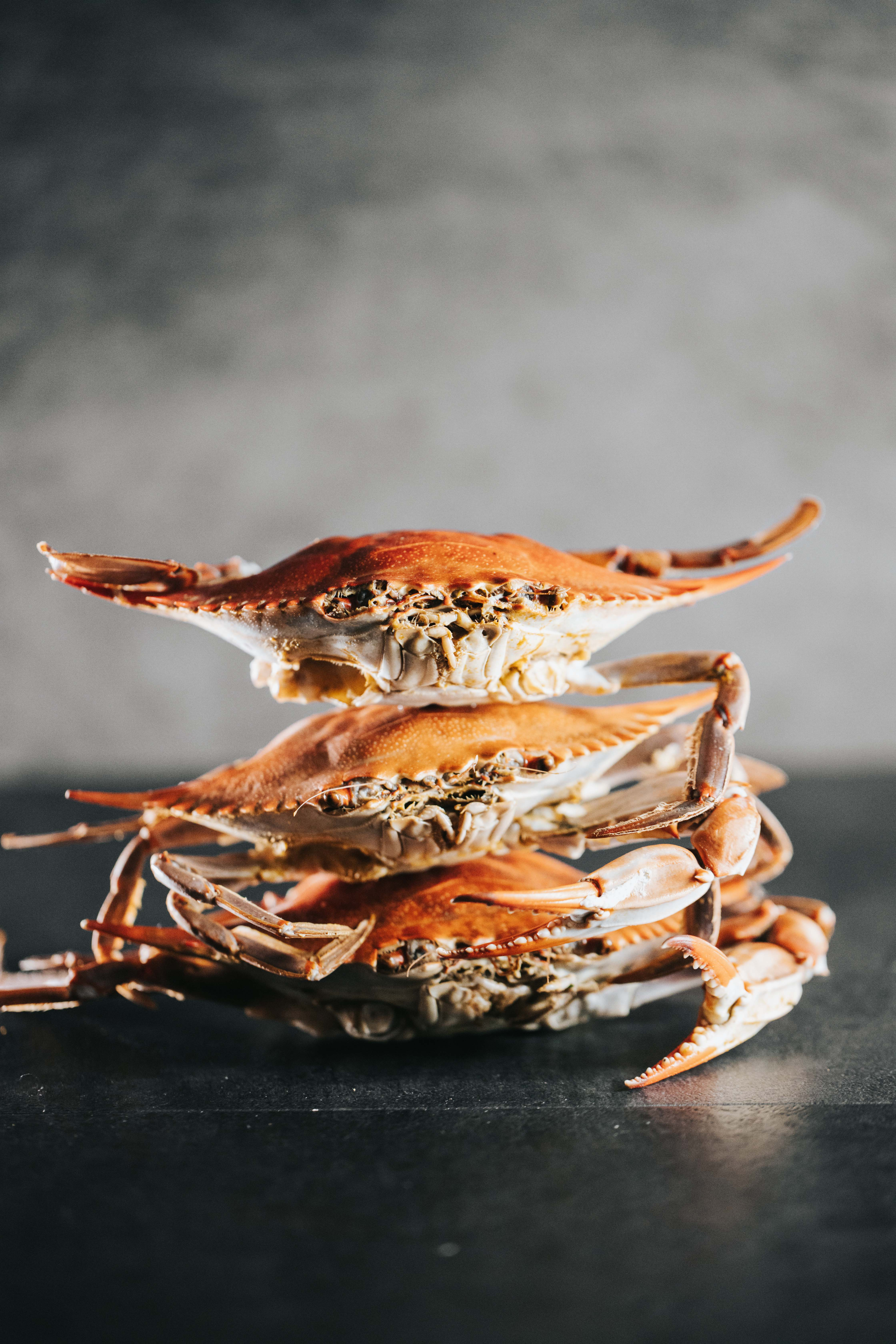 Recipe: Sauce up your crabs the easy way with Marion's